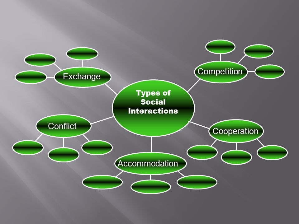 Competition Exchange Conflict Cooperation Accommodation Types of