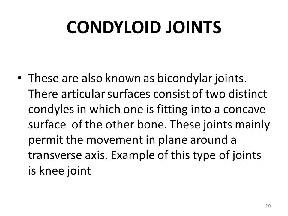 Condyloid Joint Knee