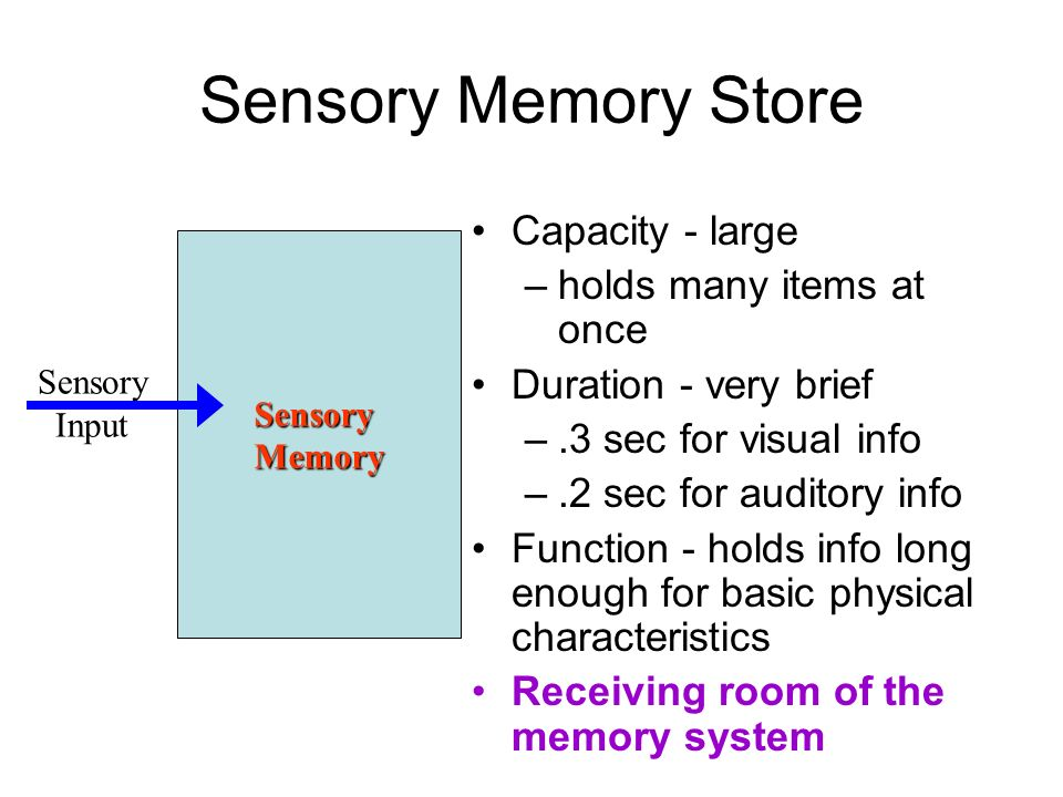 what is sensory memory Human auditory sensory (echoic) memory is correlated with changes of an event- related potential (erp), termed mismatch negativity (mmn.