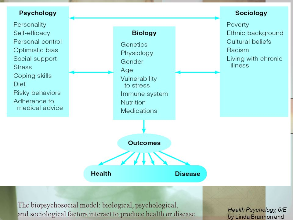 Introduction to Health Psychology   Boundless Psychology