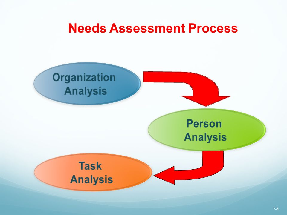The Training Process  Needs Assessment  Ppt Video Online Download