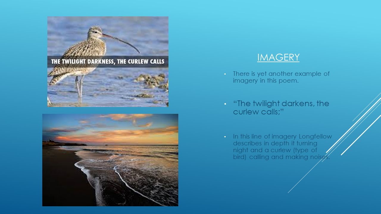 Imagery The twilight darkens, the curlew calls;