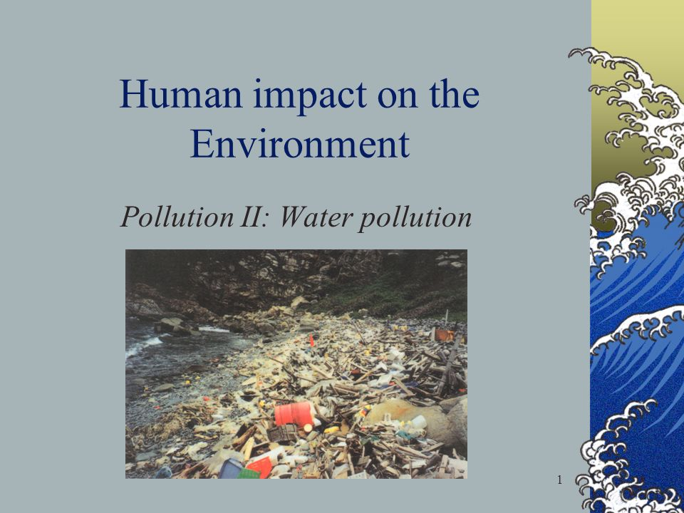 essay on human impact on the environment