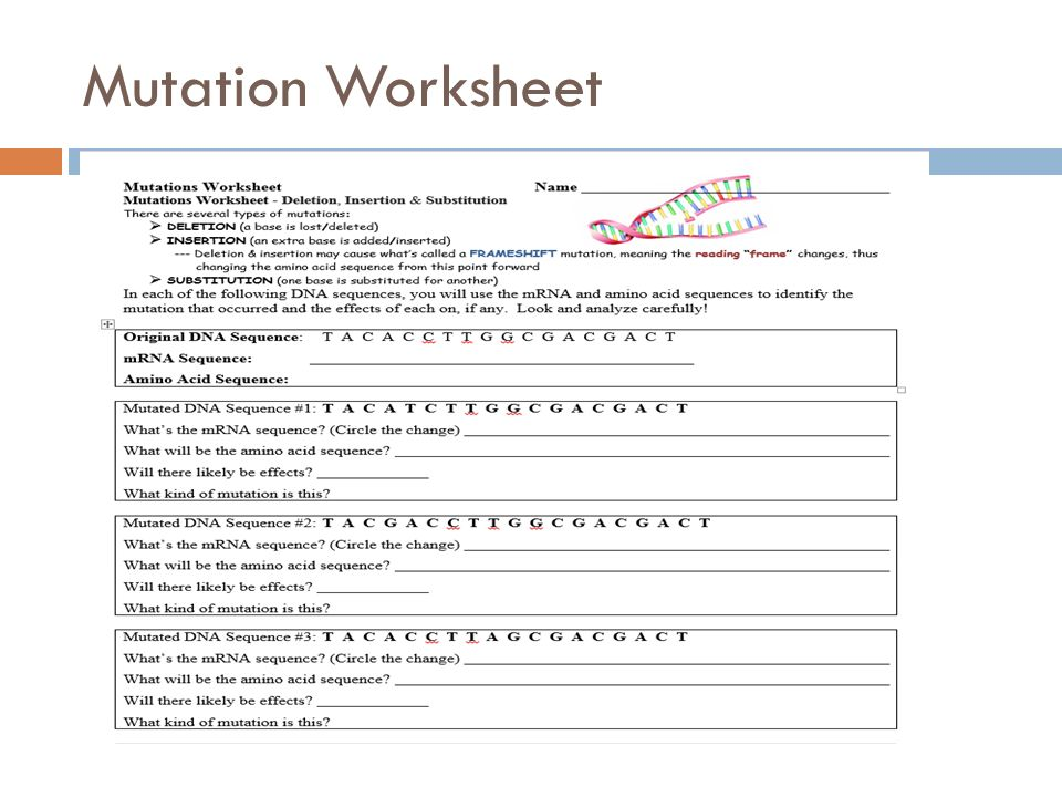Aca Molecular Genetics and Biotechnology ppt video online download – Types of Mutations Worksheet