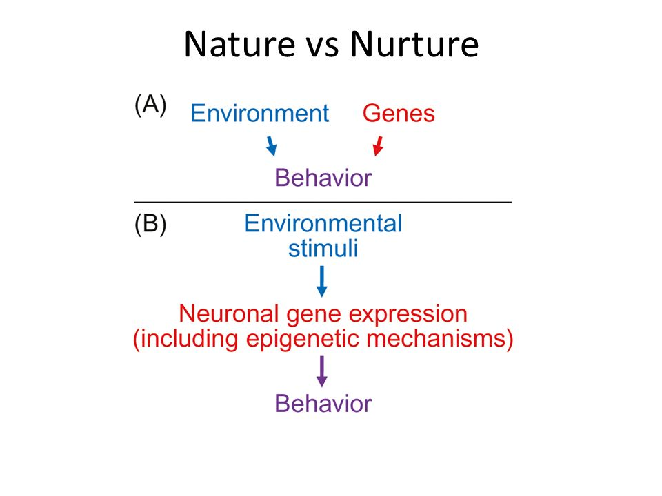 Nature, Nurture and Psychopathy