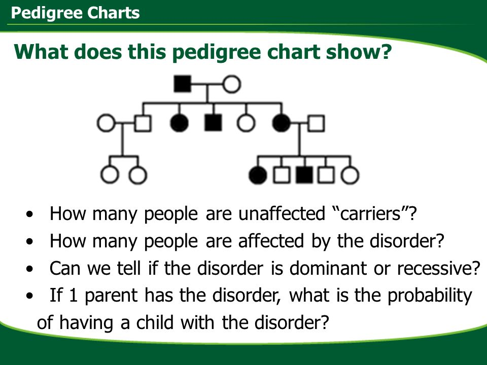 Dominant And Recessive Alleles Chart Pedigree Charts. - ppt...