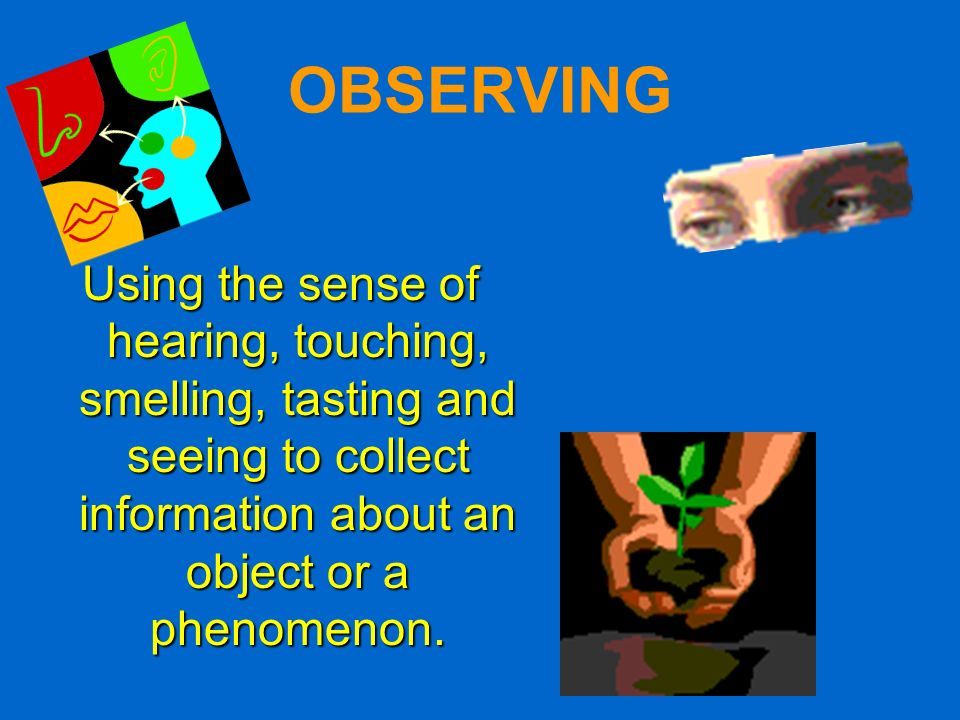 OBSERVING Using the sense of hearing, touching, smelling, tasting and seeing to collect information about an object or a phenomenon.