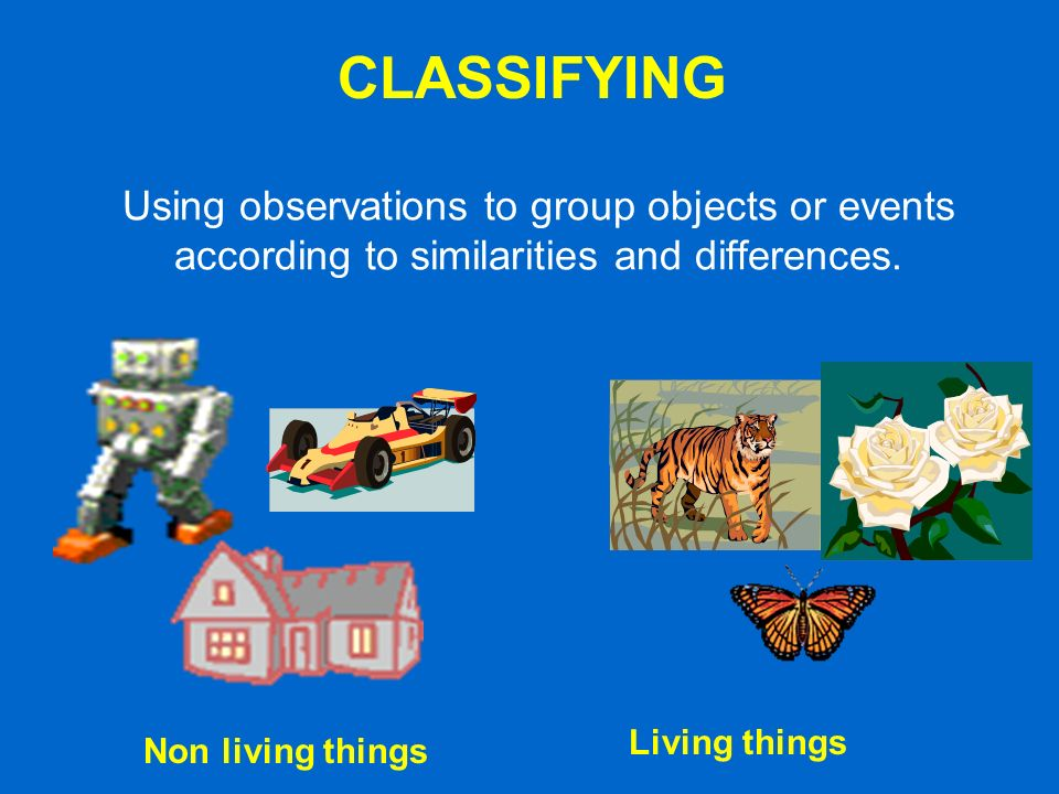 CLASSIFYING Using observations to group objects or events according to similarities and differences.