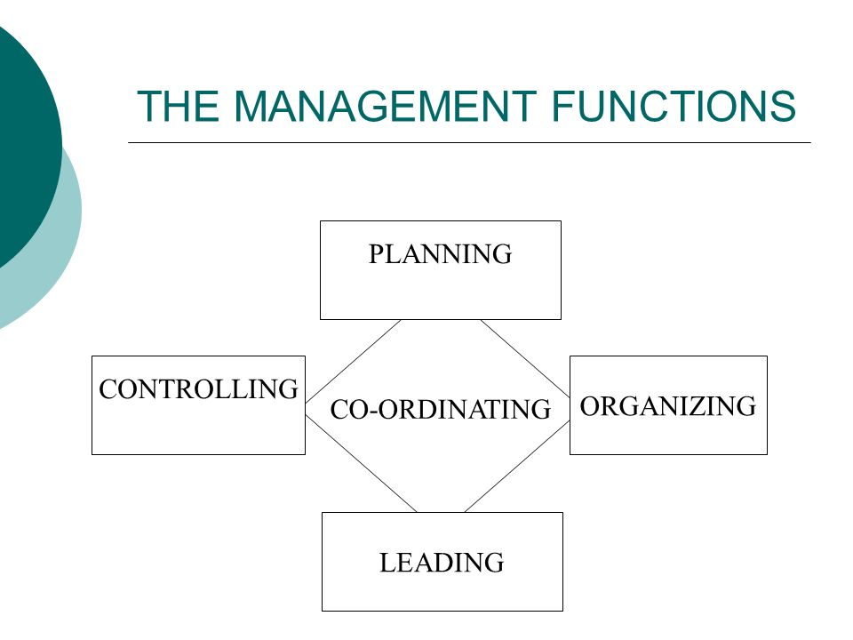 Thesis: Planning, organizing, controlling, and leading