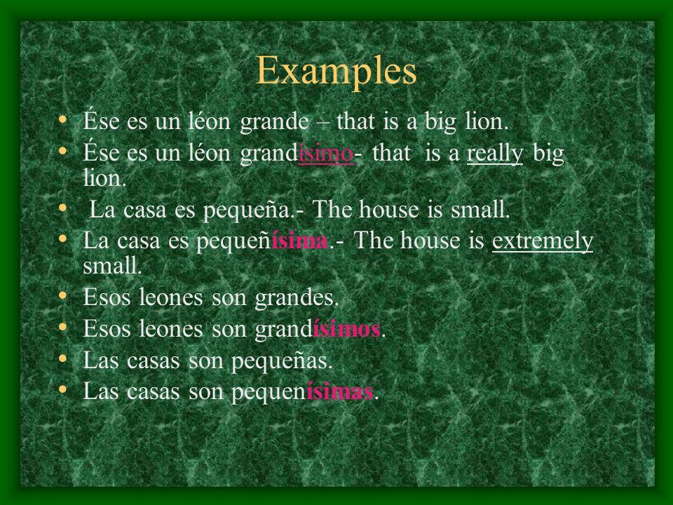 Examples Ése es un léon grande – that is a big lion.