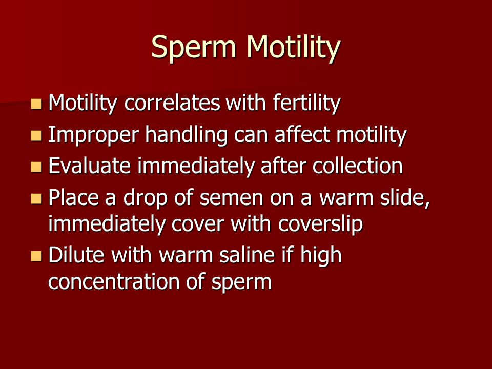 sperm motility fertility