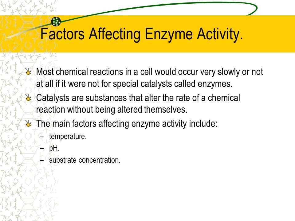 the role of enzymes in chemical reactions occurring in cells Most chemical reactions within cells enzymes bind with particular reactants until the chemical reaction occurs.
