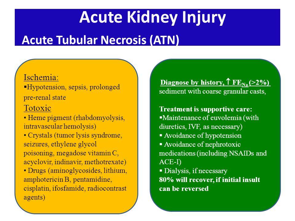 rhabdomyolysis and acute kidney injury pdf