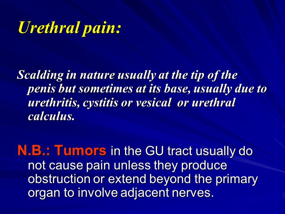 Pain at tip of Penis STD or Prostatitis? - Urology