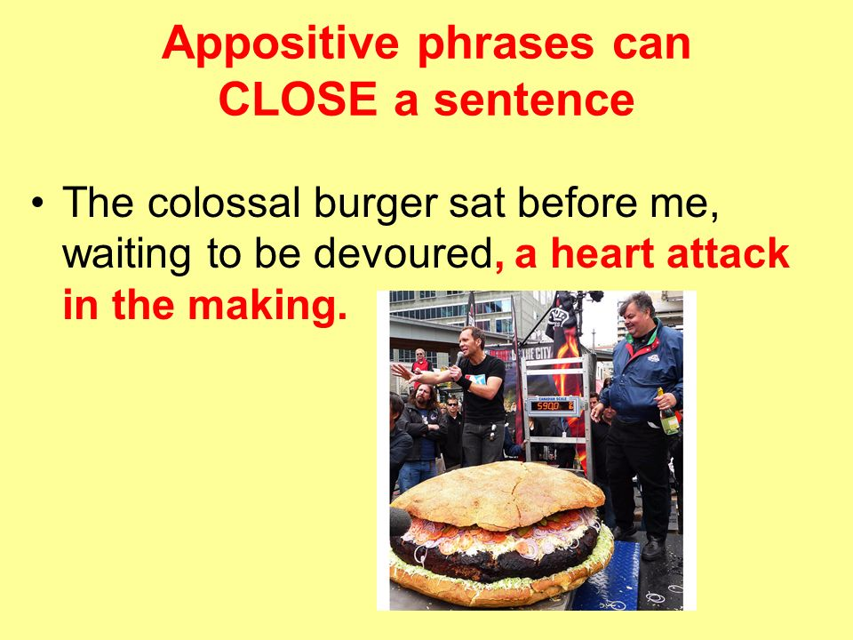 Appositive Phrase : Definition, Usage, Examples
