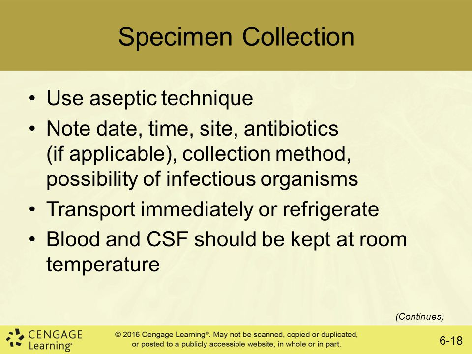 urine specimen collection instructions