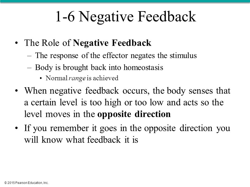 the role of negative feedback in States of the systems we will then discuss the role of positive feedback in information processing, and the role of negative feedback in alleviating the dependency.