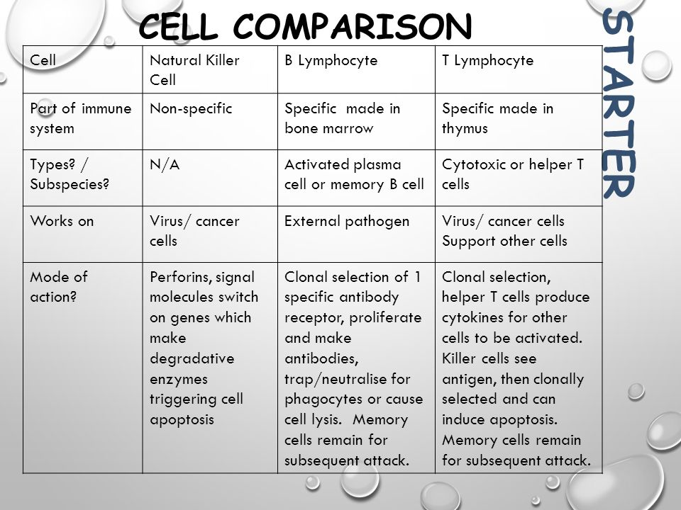 Comparison Of Natural Selection Mechanisms