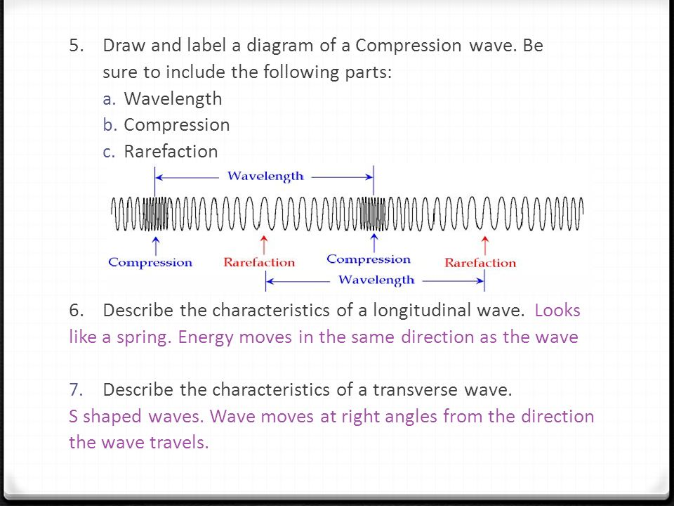 STUDY GUIDE Wave Properties, Interactions, and Sound Waves - ppt ...