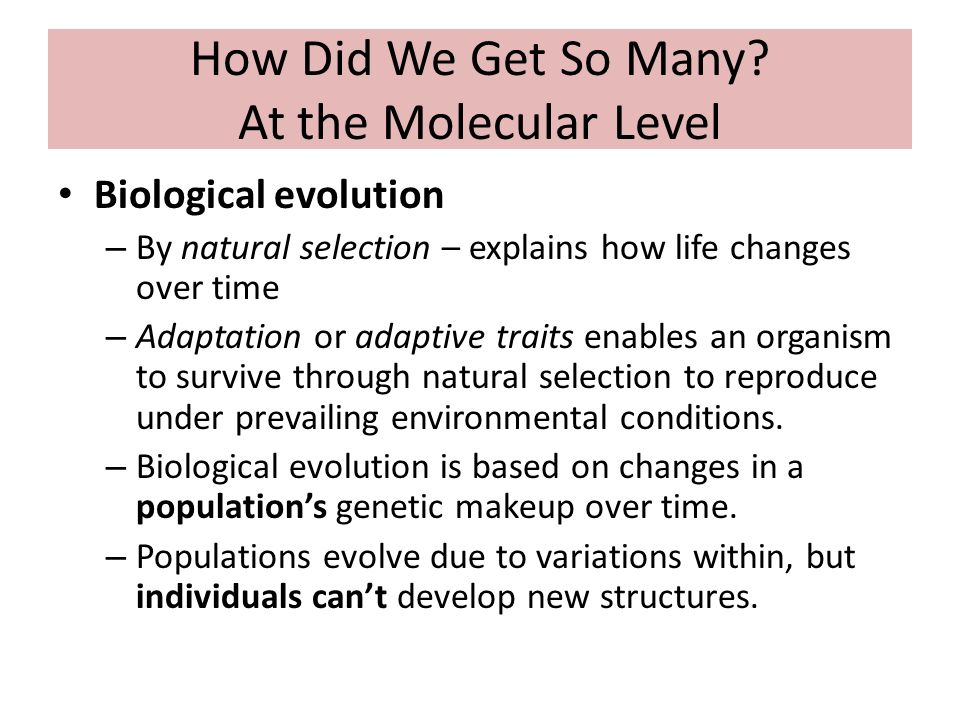 How Does A Population Evolve Through Natural Selection