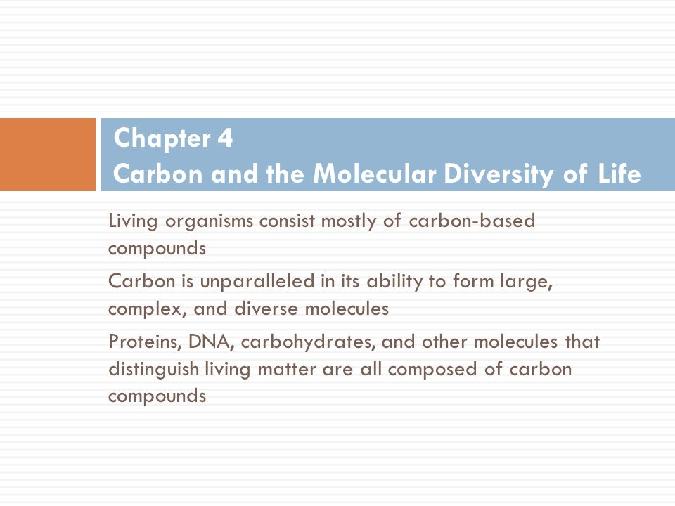 outline of carbon and molecular diversity Chapter 4 carbon and the molecular diversity of life 2013 2014  carbon and molecular diversity of life  chapter 4 carbon and the molecular diversity of life - duration:.