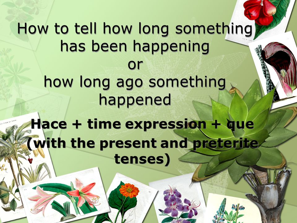 Hace + time expression + que (with the present and preterite tenses)