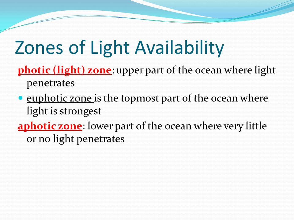 Zones of Light Availability