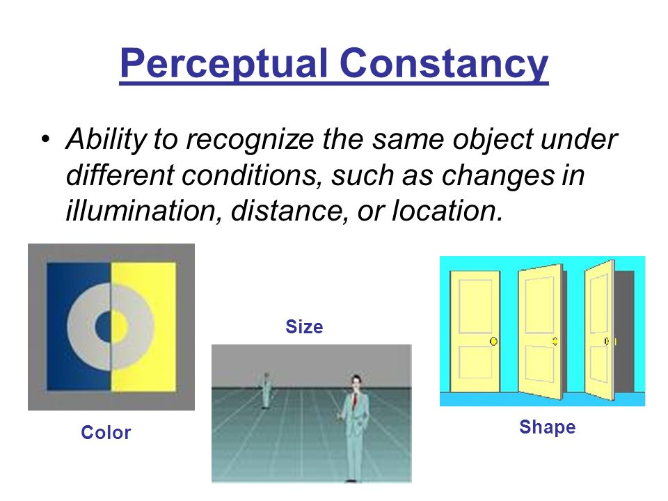 visual perception lab size constancy Learn more about form constancy and how to help kids develop this size or font changes, or when they these visual perception activities are intended to.