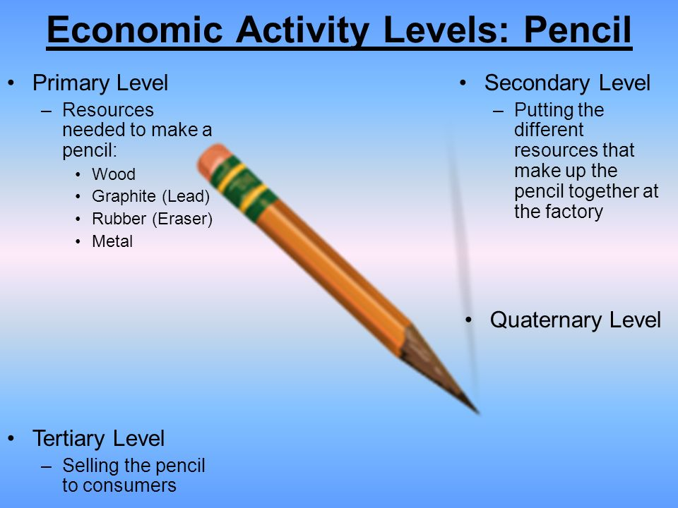 economic activity What is classification of economic activities is used for various statistical  purposes, for purposes of classification is used for state statistics,.
