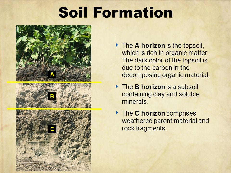 Understanding soil ppt video online download for Soil formation