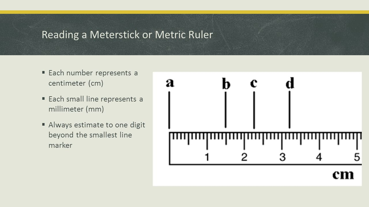 Reading A Metric Ruler | www.imgkid.com - The Image Kid ...