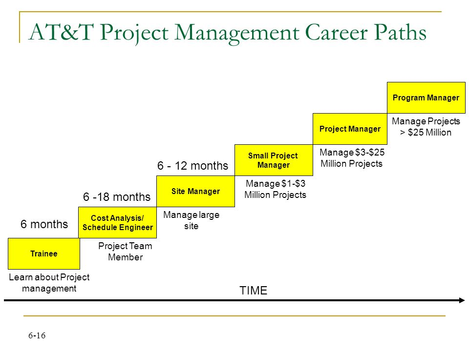 A project manager's qualifications and career path