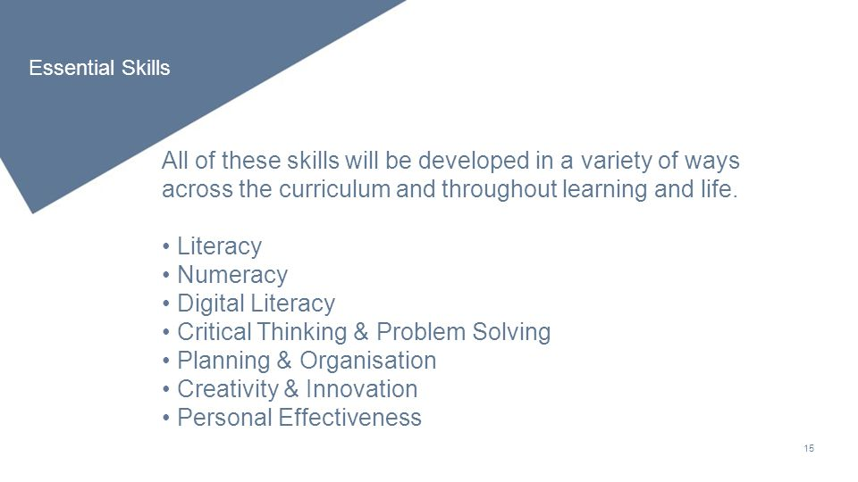 critical thinking and problem solving skills used in numeracy program Increase your employability by thinking beyond qualifications and experience and selling your potential recognise, develop and use your transferable skills.