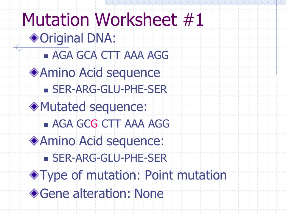 Definitions Mutation any change in the genetic sequence ppt – Gene Mutation Worksheet