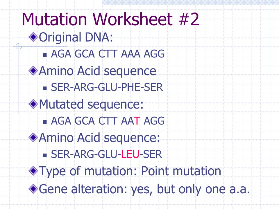 Definitions Mutation any change in the genetic sequence ppt – Types of Mutations Worksheet
