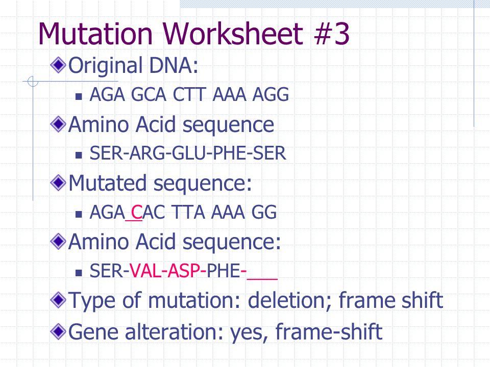 Genetics worksheets for 5th graders