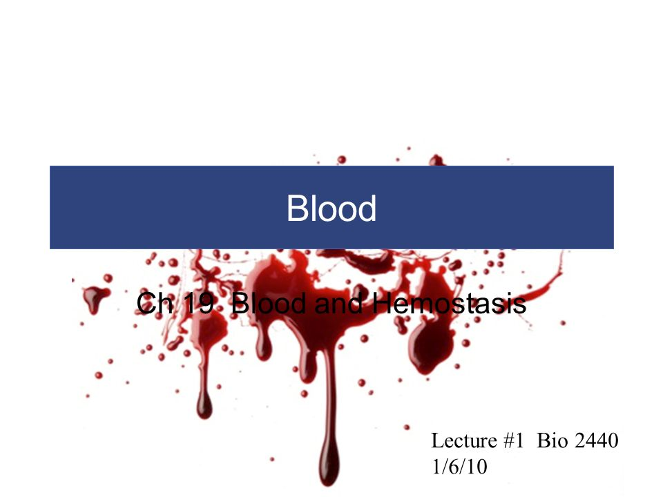 Ch 19 Blood and Hemostasis - ppt video online download