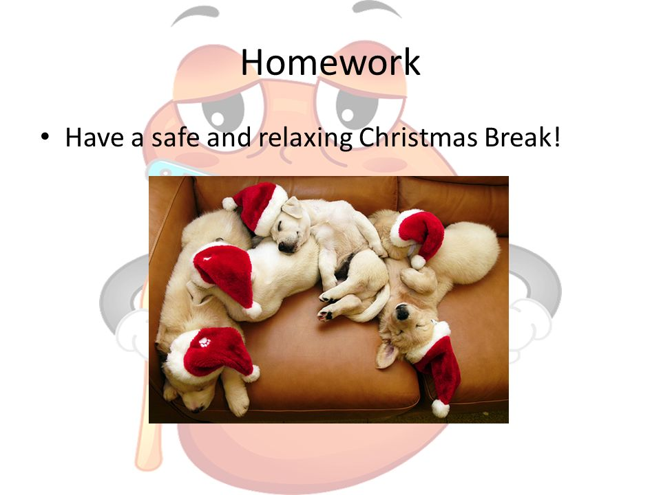 Homework Have a safe and relaxing Christmas Break!