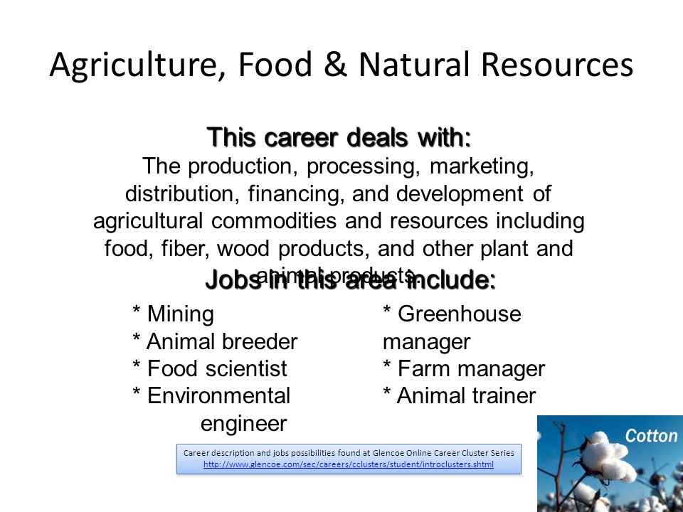 Agriculture Food Natural Resources Description