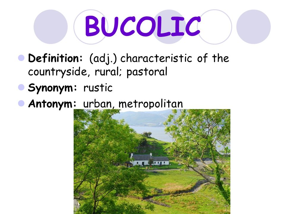 BUCOLIC Definition: (adj.) Characteristic Of The Countryside, Rural;  Pastoral.