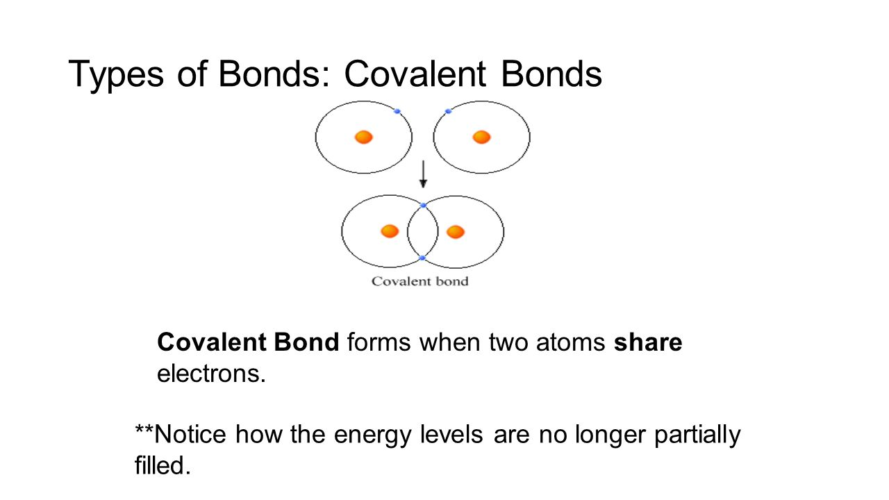 what role does electrons play in What role does evidence play in natural what role does peer review play in an experiment testing ideas about the attraction between electrons and protons.