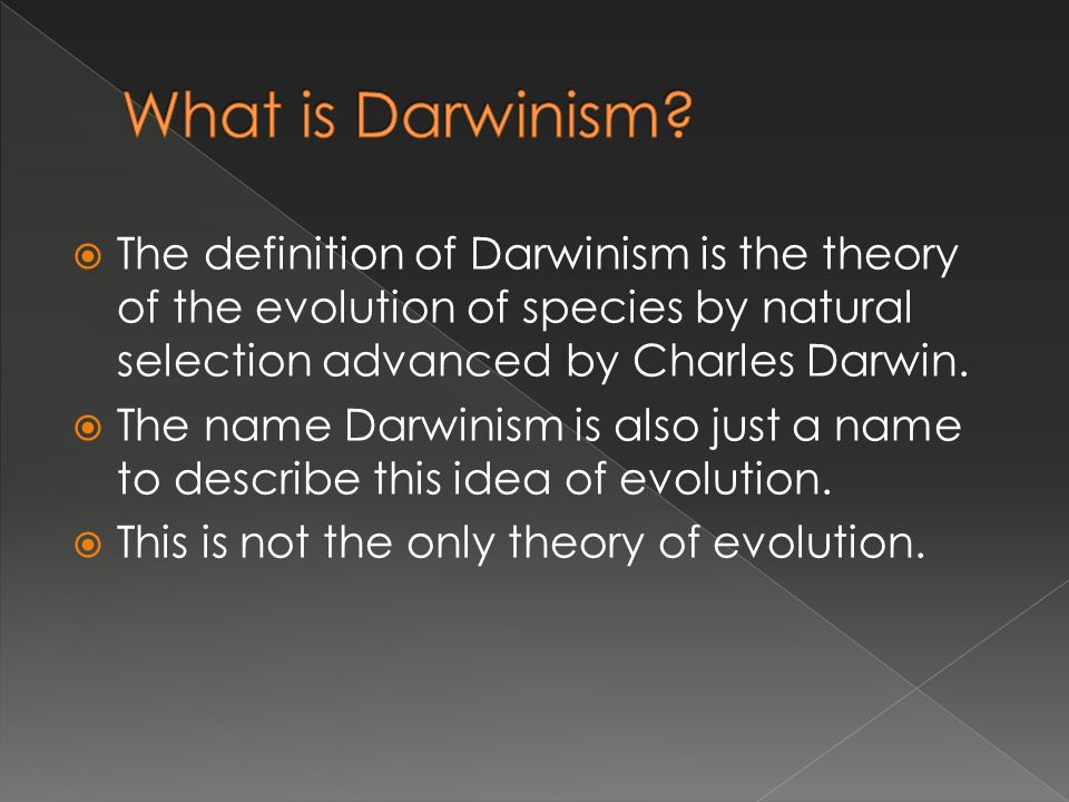 An explanation of the darwinian theory of evolution and the theory of biological evolution