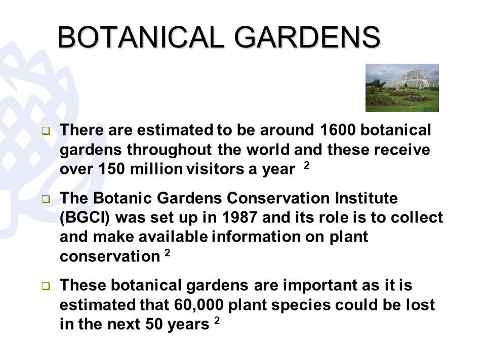 Faculty of natural sciences ppt download for Garden and its importance