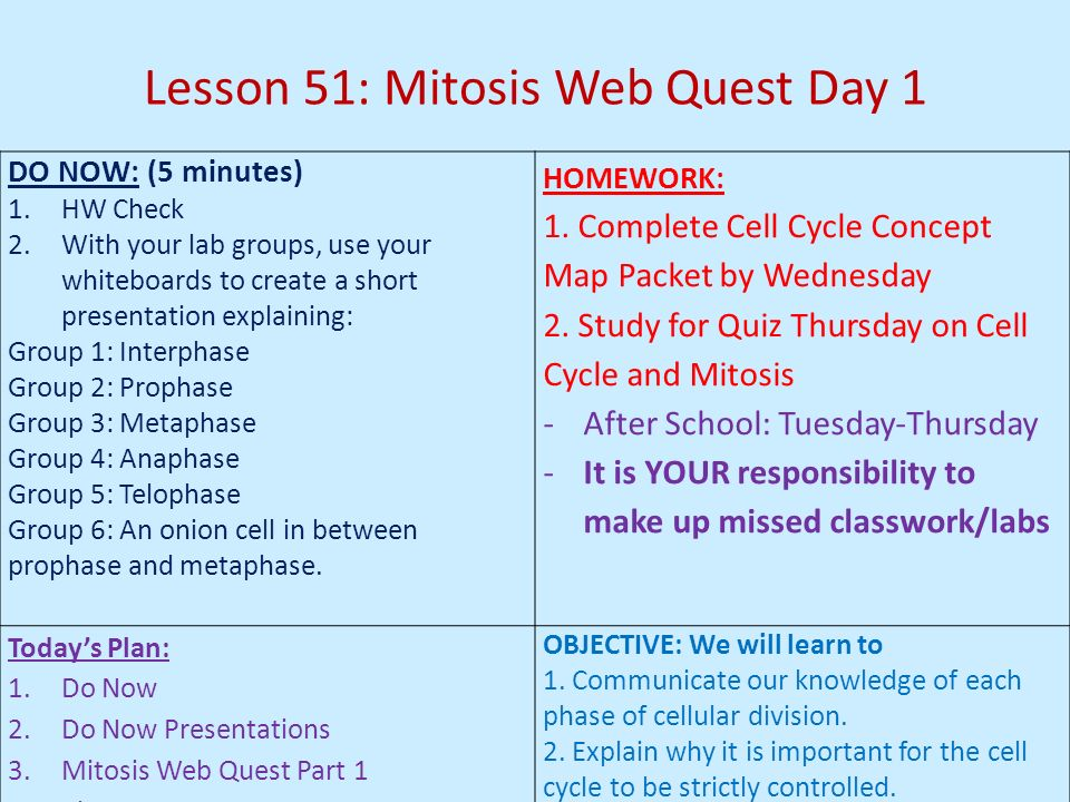 Lesson 51: Mitosis Web Quest Day 1