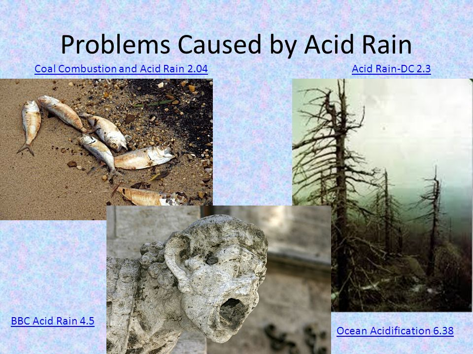 an introduction to the problem of acid rain Concern with the problem, the forest is addressing this topic in its current forest  plan revision as it  an introduction to acidic deposition and its.