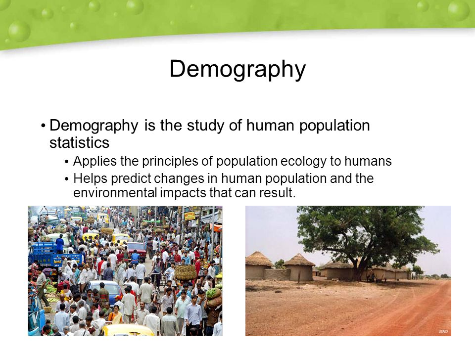 Demography Demography is the study of human population statistics