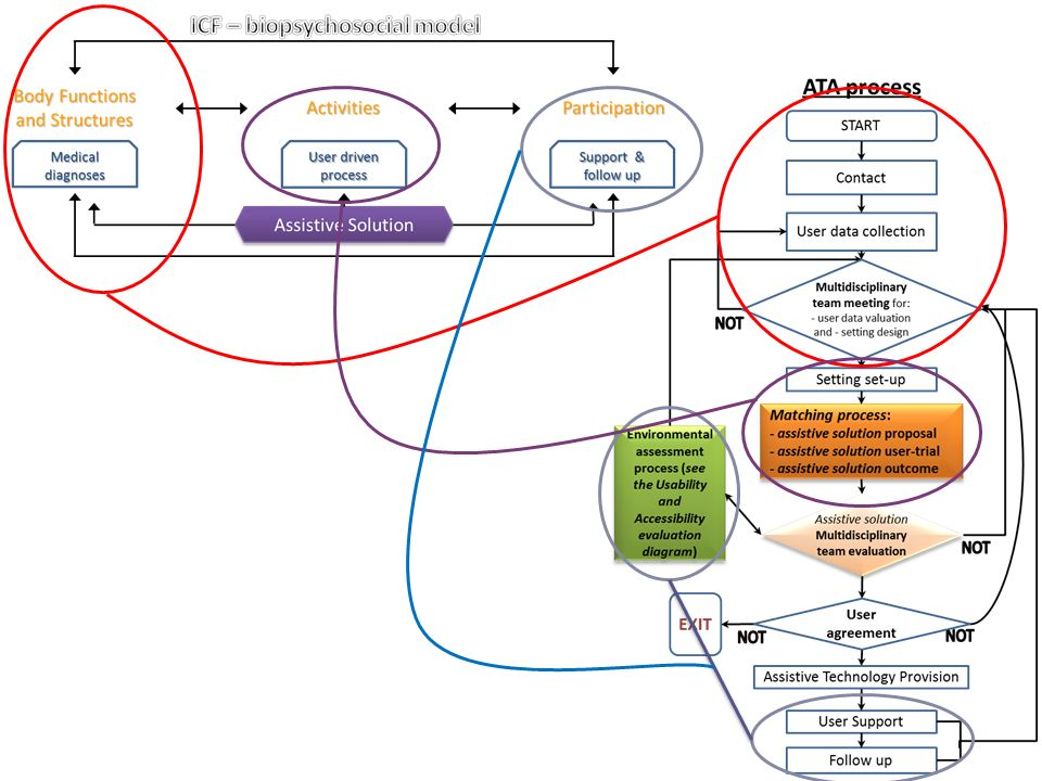 The ATA process under the lens of the ICF biopsychosocial model