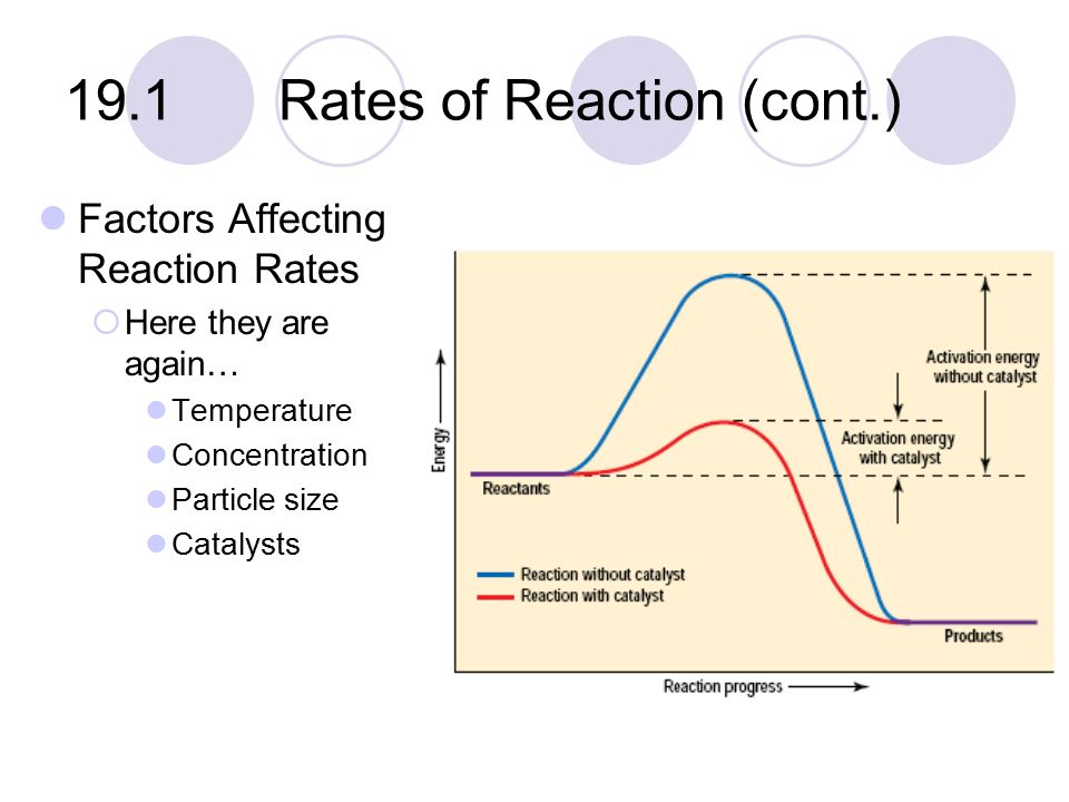 how concentration affects the rate of reaction essay Aim: the aim of the investigation was to investigate the effect of substrate concentration hydrogen peroxide h o (in %) on the rate of reaction of the enzyme catalase (in 1/mean time).