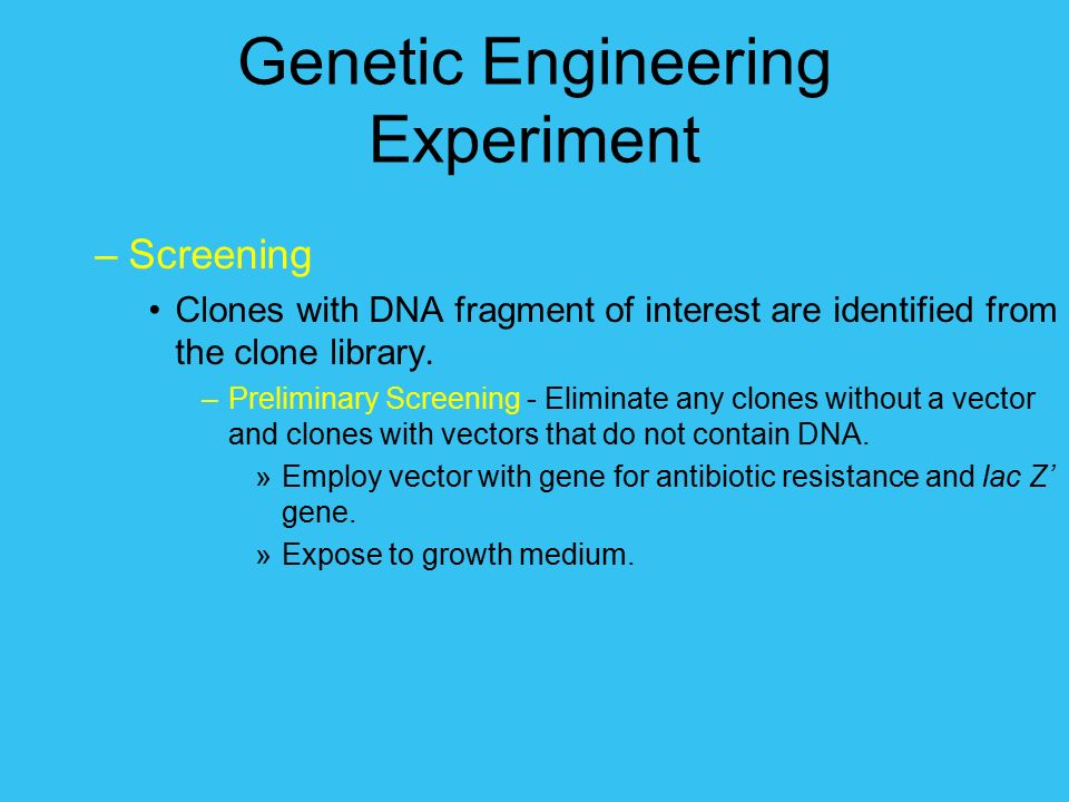 """an analysis of the purpose of the lab experiment and the fragments of foreign dna Electrophoresis as used to separate and visualize dna fragments and how  use  restriction enzyme analysis and """"dna electrophoresis fingerpnnting"""" to identify  and  for this experiment it is necessary to reviewthe  pre-lab focus  questions: introduction to dna fingerprinting  for ecorl and psll enzymes to  function."""