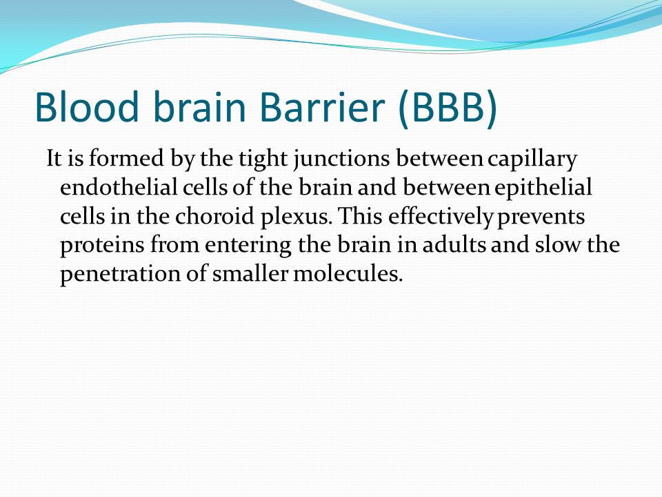 Cerebral Circulation Amp Csf Formation Ppt Video Online